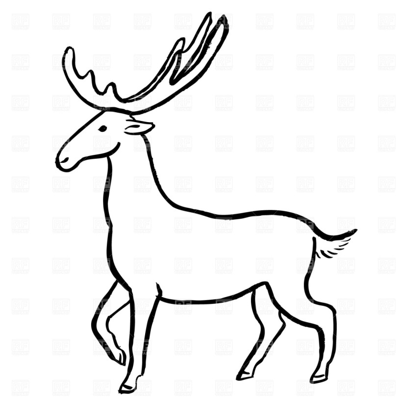 Moose Plants And Animals Free Clipart Images