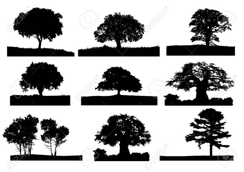 Oak Tree Silhouette Cliparts Stock Vector And Royalty Free Oak: https://clipartion.com/free-clipart-oak-tree-silhouette