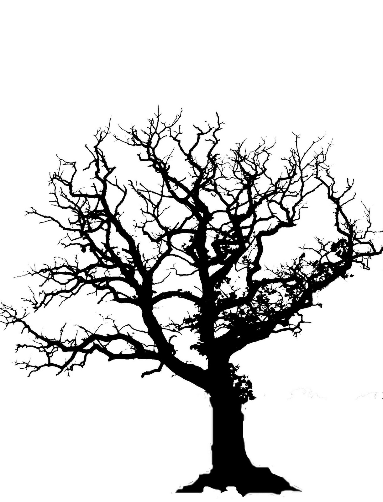 Oak Tree Silhouette Free Clipart Images