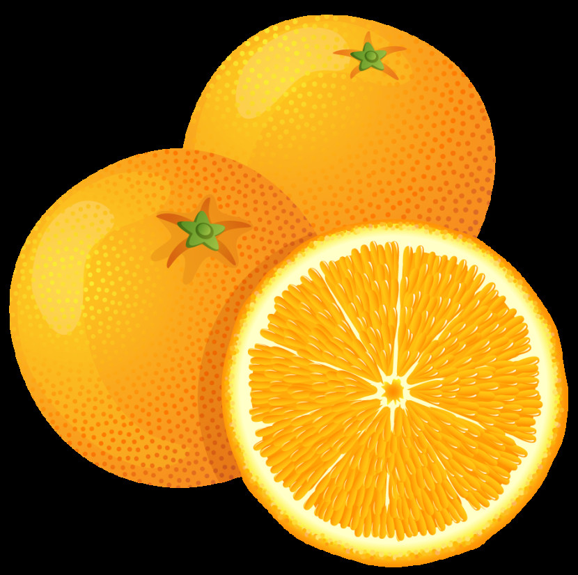 Orange Clipart 2 Clipart Kids Pedia