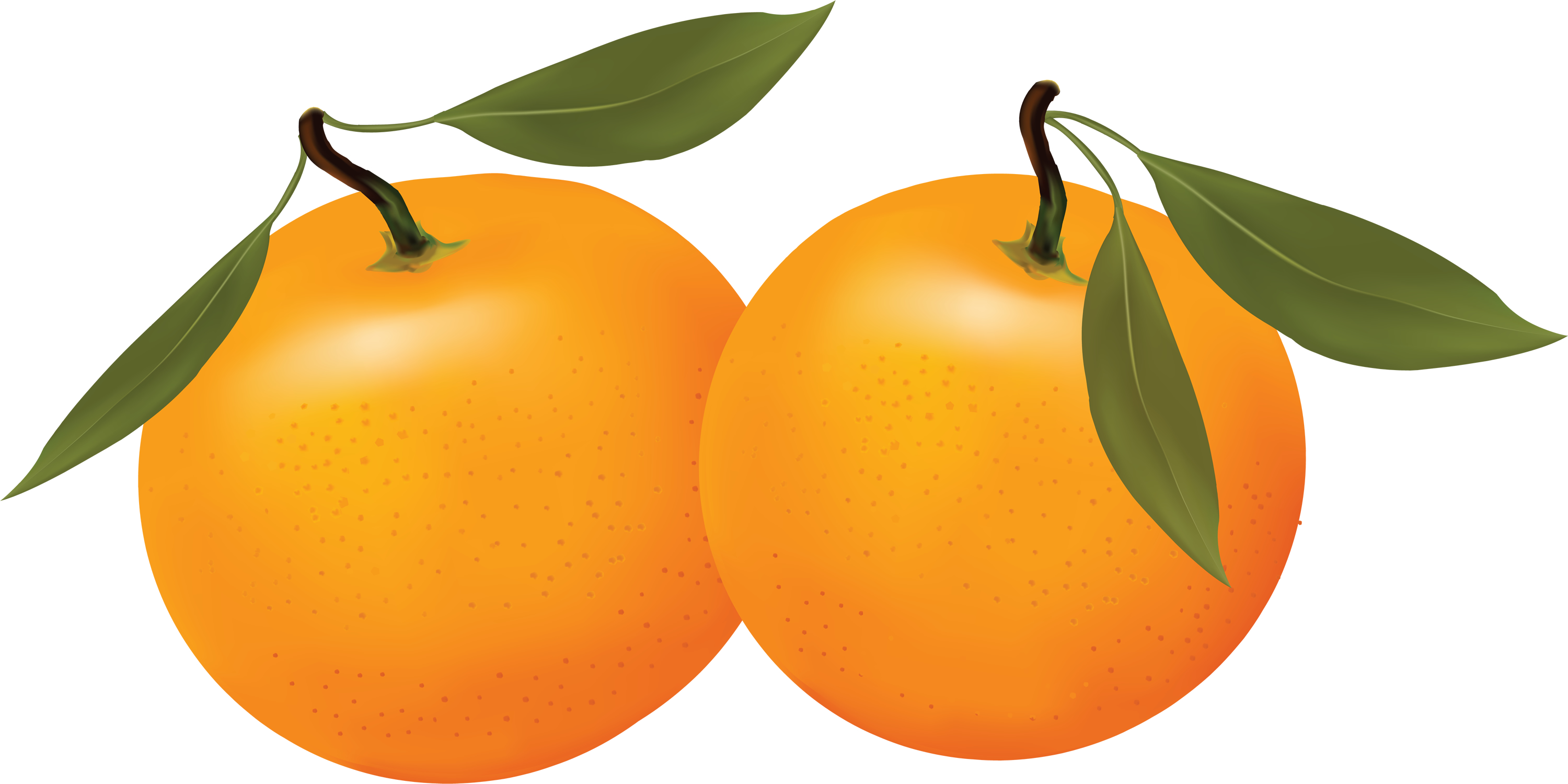 Orange Fruit Cartoon Clipart Free Clip Art Images