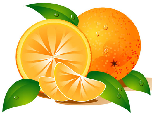 Orange Fruit Clipart