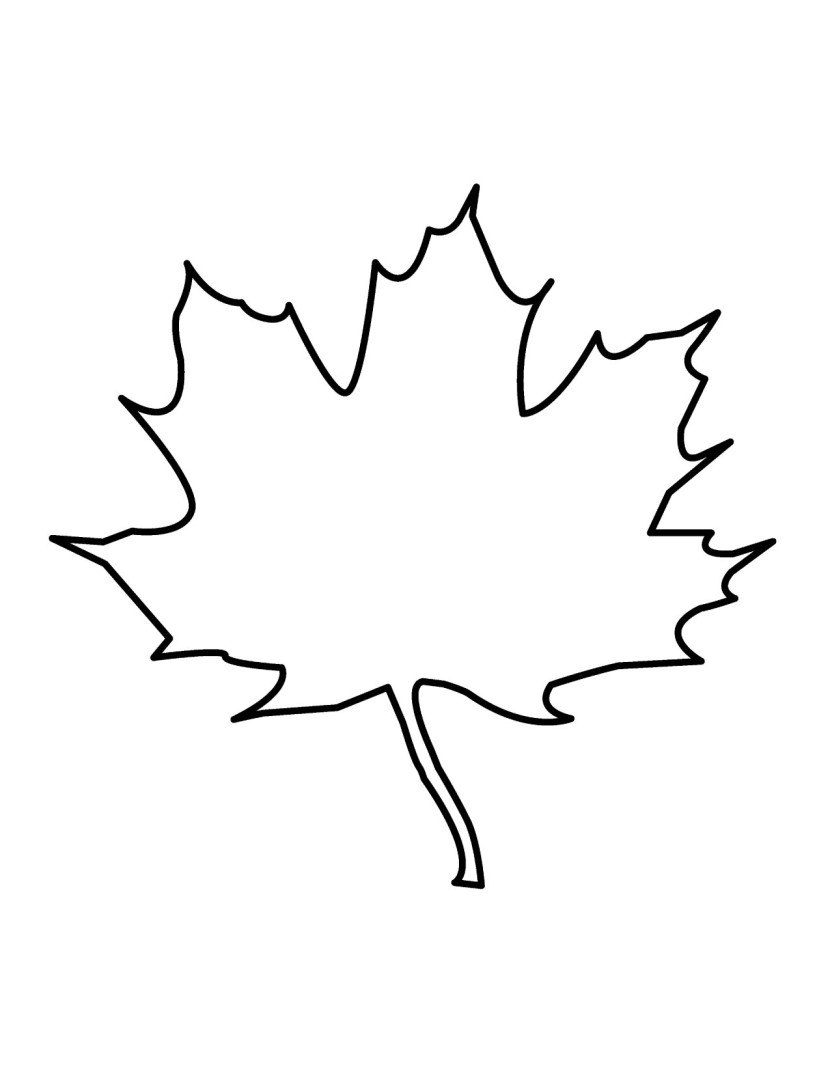 Outline Of Maple Leaf