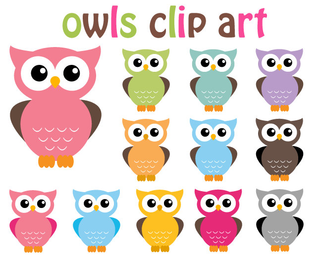 colorful cute owl vector - photo #10