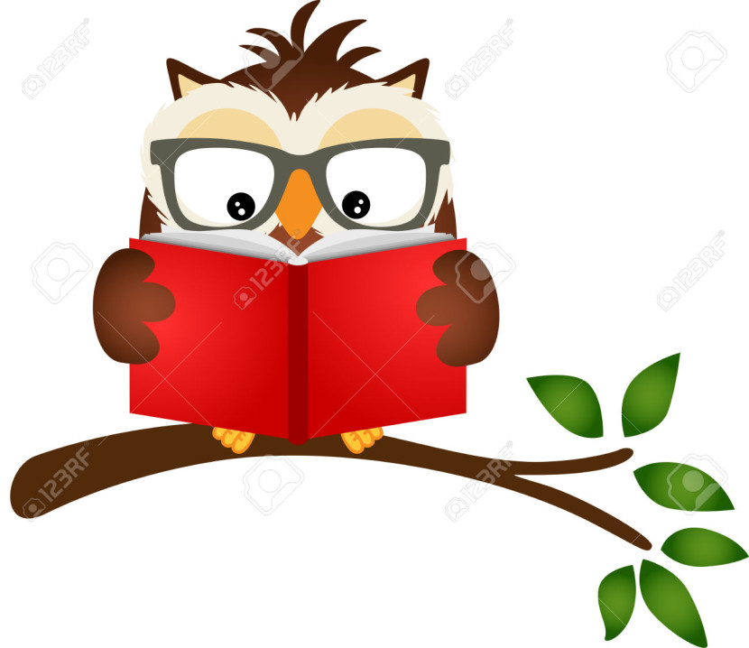 Owl Reading A Book On Tree Branch Royalty Free Cliparts Vectors
