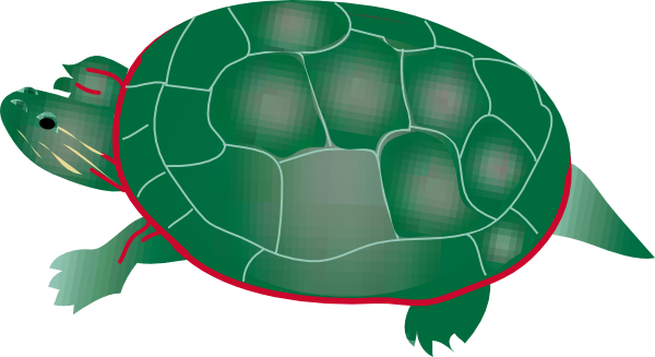 Painted Turtle Clip Art Free Vector 4vector