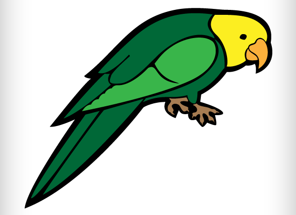 Parrot Vector Image Download Free Vector Graphic Designs