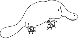 Clip Art Platypus Clipart best platypus clipart 10032 clipartion com perry the free clip art images