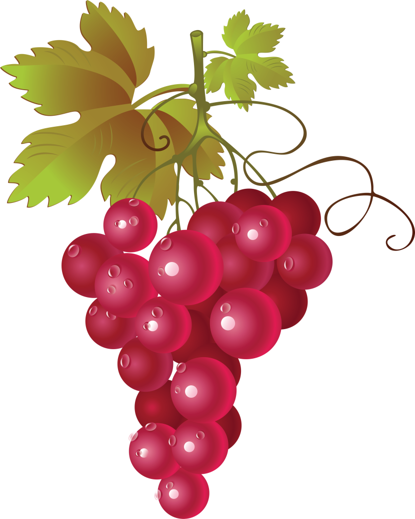 Pictures Of Red Grapes