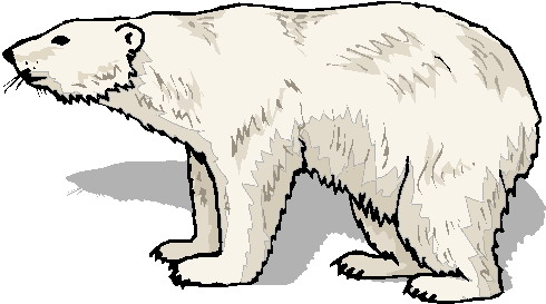 Polar Bear Clip Art Free Free Clipart Images