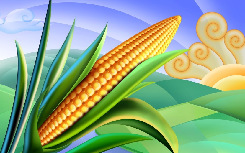 Psd Food Illustrations 3 Corn Clipart Corn Picture Wallpapers
