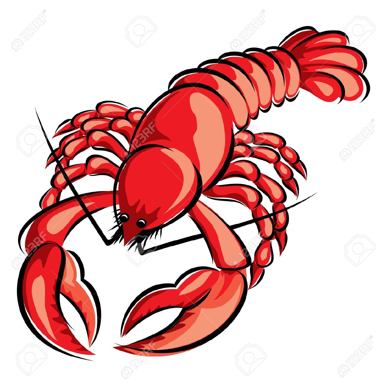 Red Lobster Stock Vector Illustration And Royalty Free Red Lobster