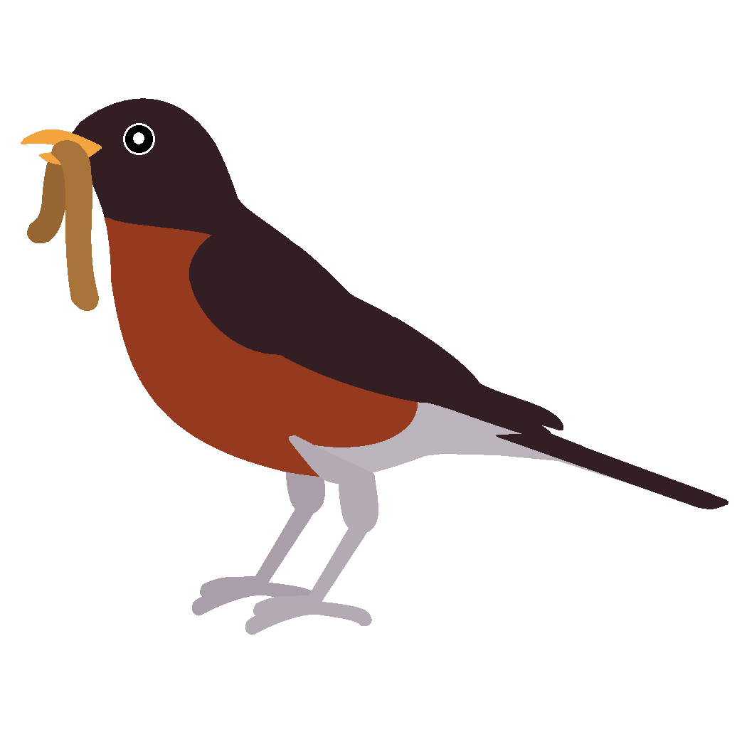 Red Robin Bird Clipart Free Clip Art Images