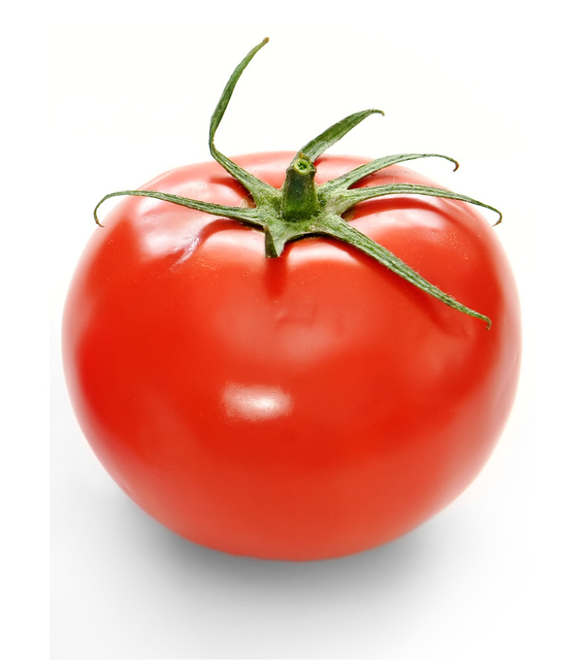 Red Tomato With Drops Stock Illustration Clipart Free Clip Art