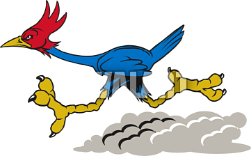 Roadrunner Clipart Free Clipart Images