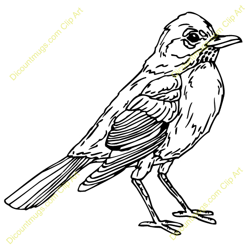 Robin Clipart Free Clip Art Images