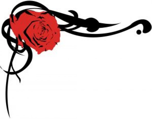 Rose Border Photo Free Download