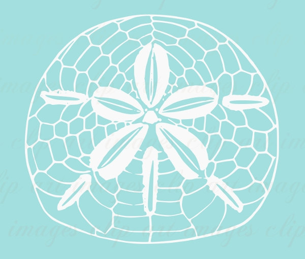 Sand Dollar Clip Art Royalty Free Beach Houseimagesclipart