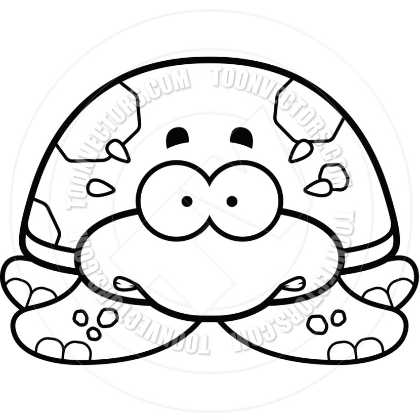 Sea Turtle Clipart Black And White Photo
