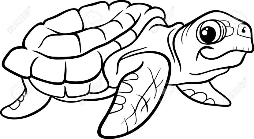 Sea Turtle Clipart Black And Whiteimage Gallery Image Gallery