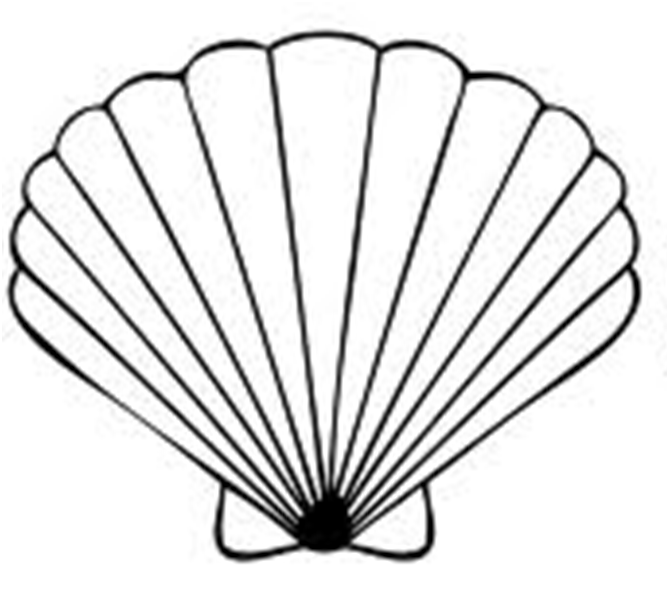 Seashell Clipart Black And White Free Clipart Images