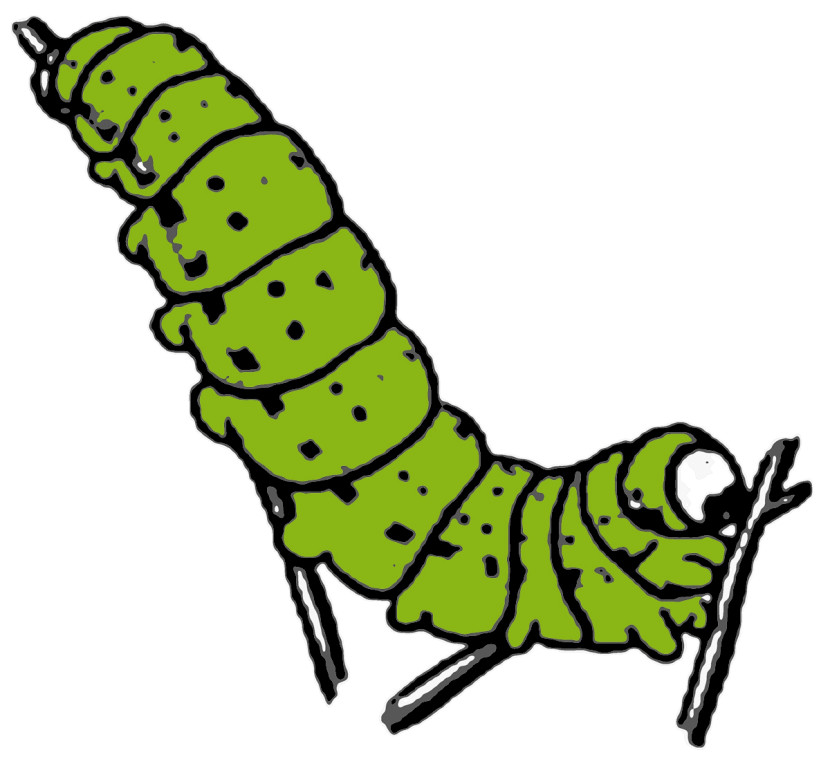 Clip Art Caterpillar Clip Art best caterpillar clipart 10180 clipartion com seaweed clip art