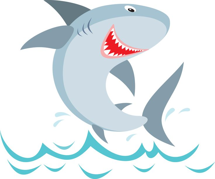 Shark Clipart Gallery Official Shark Summer Pinterest