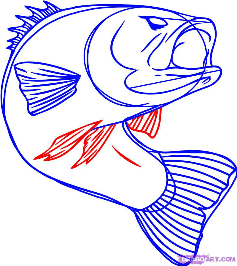 Simple Bass Clipart