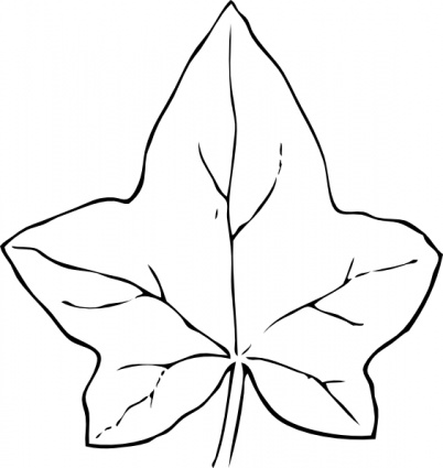 Simple Leaf Outline