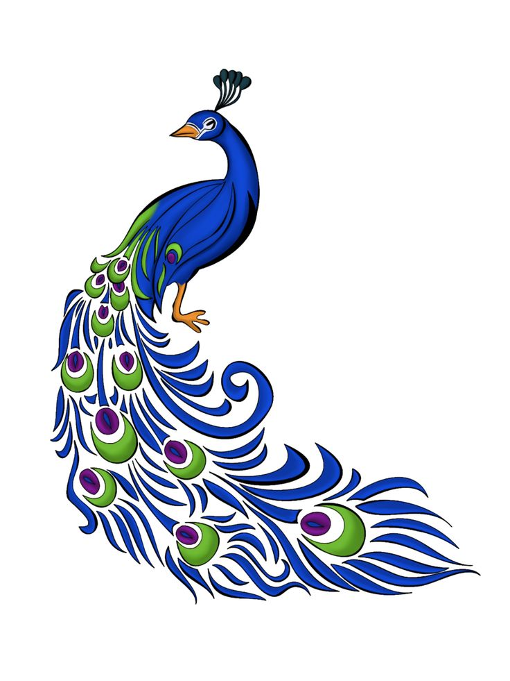 Simple Peacock Clipart Black And White Aierxxei4 Png 4 5