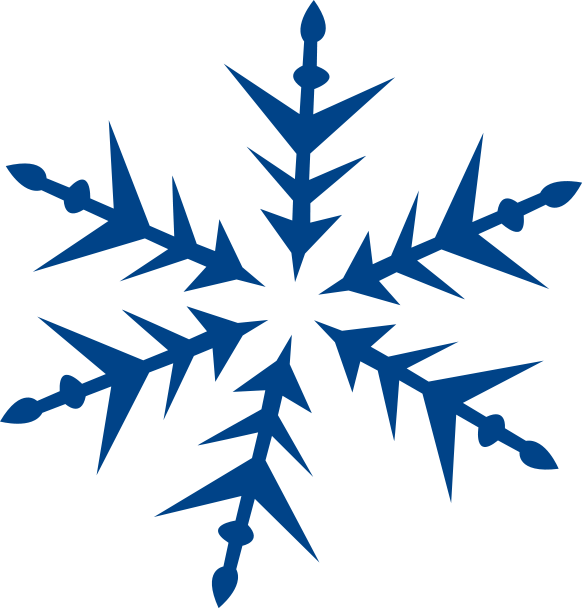 Snowflake Large Blue Spike Weather Snow