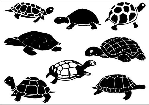 So Many Turtles Christmas Things Pinterest Clip Art Turtles