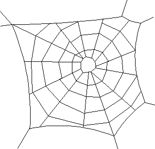 Spiderweb 2 Animals Bugs Spider