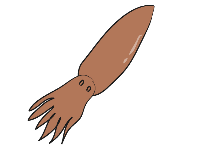 Squid Clip Art Animal Free Download