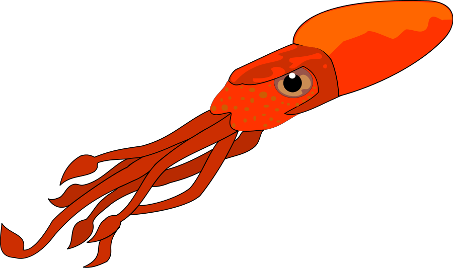 Squid Clip Art Free Free Clipart Images