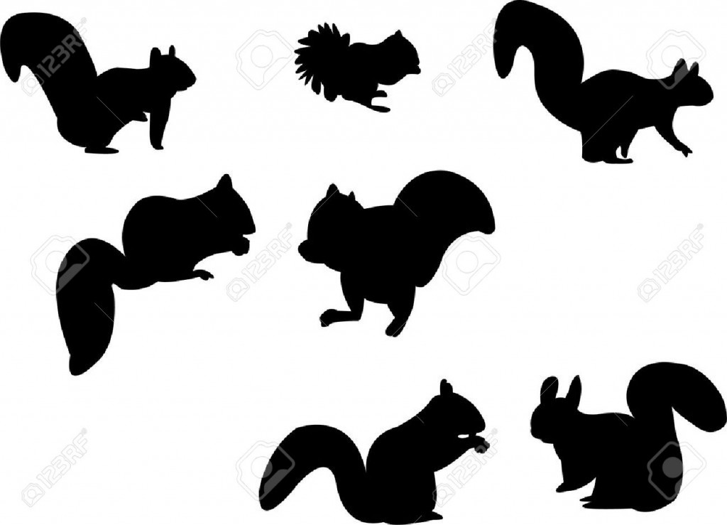 Squirrel Silhouette Royalty Free Cliparts Vectors And Stock