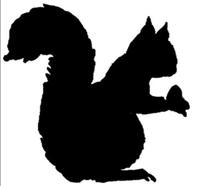 Squirrel Silhouette Squirrels In Black Silhouettes Pinterest