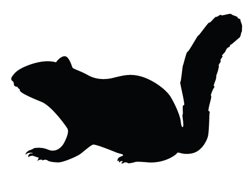 Squirrel Silhouette Vector Download Silhouette Graphics