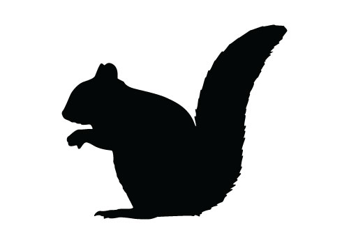 Best Squirrel Silhouette #7598 - Clipartion.com