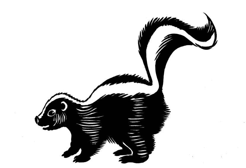 Stinky Skunk Cartoon Clipart Free Clip Art Images