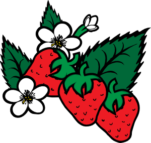 Strawberries Clip Art At Vector Clip Art Online