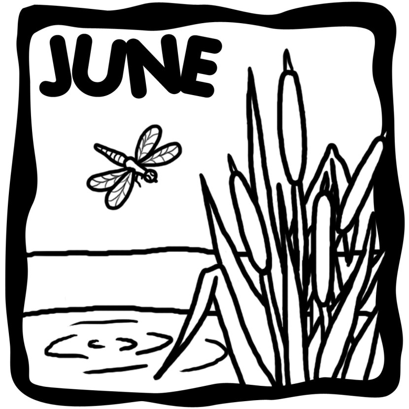 Summer Clip Art Black And White - Clipartion.com