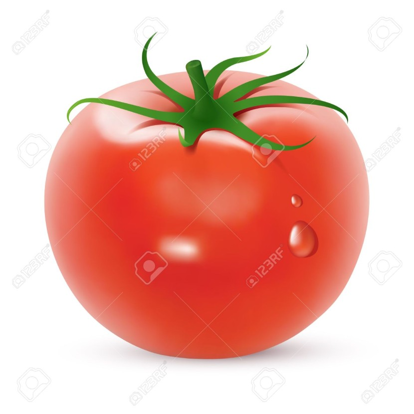 Tomato Created Using Gradient Meshes Royalty Free Cliparts