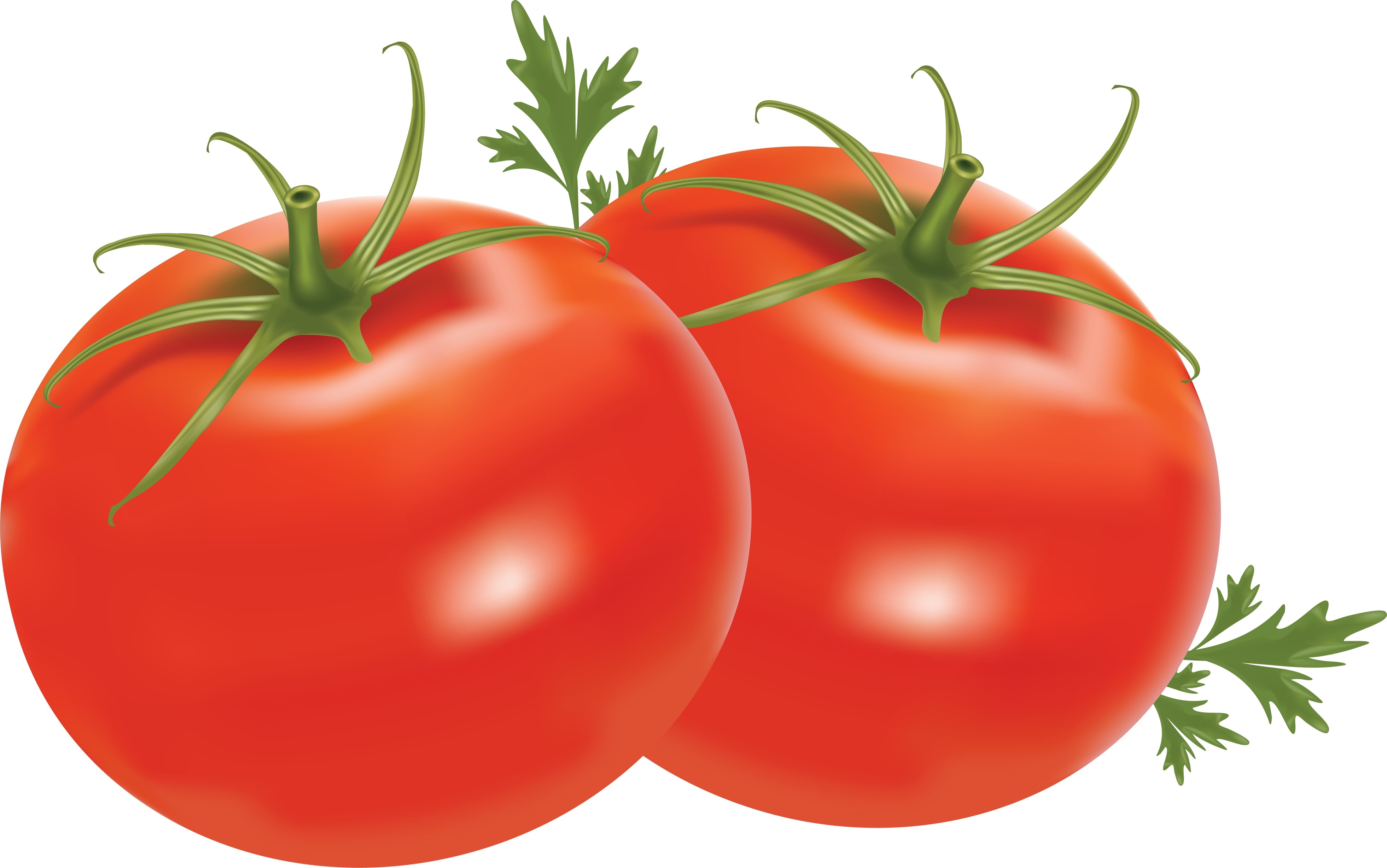 Tomato Png Image Picture