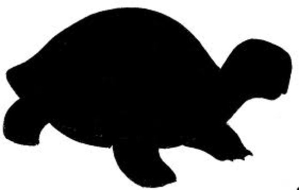 Turtle Silhouette - Clipartion.com