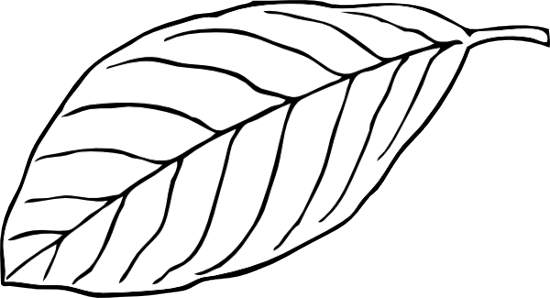 Track Clipart Black And White Free Clipart Images