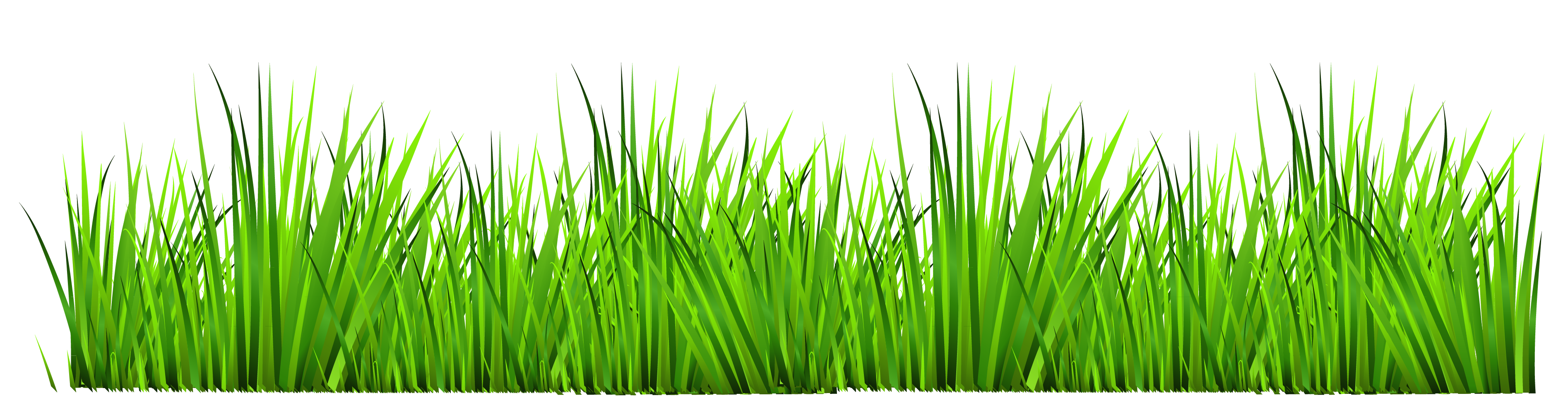 Best Grass Clipart #10832 - Clipartion.com
