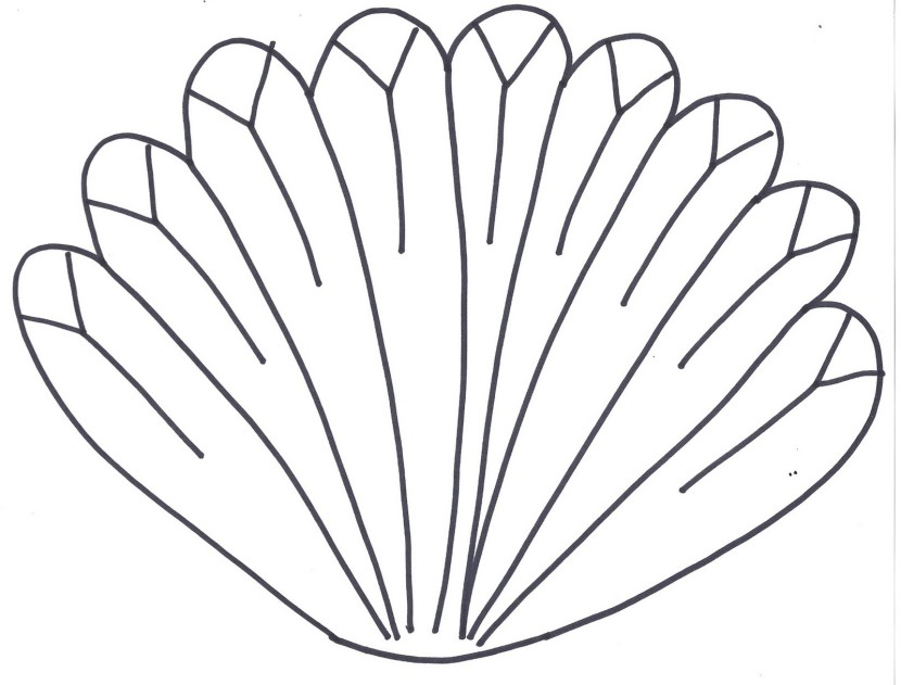 Best Turkey Feather Clip Art #14720 - Clipartion.com