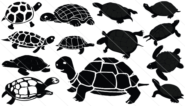 Turtle Silhouette Vector Download Turtle Vector Silhouette