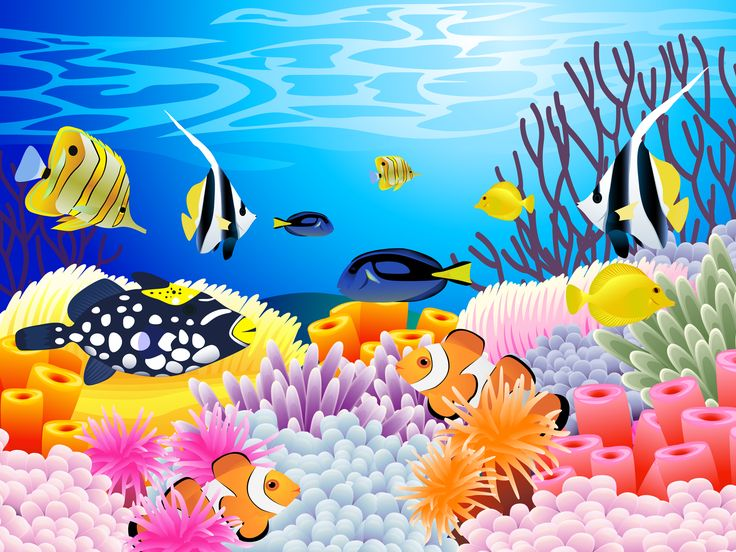 Clip Art Coral Reef Clipart coral reef clipart clipartion com undersea picture of colorful sealife with some ocean